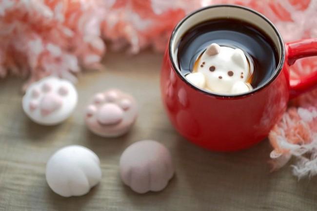 茶杯猫(二)
