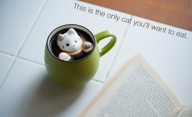 茶杯猫(三)